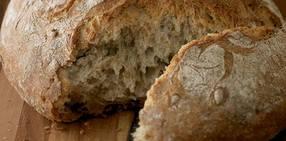 Artisanal bread v2 crop