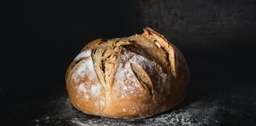 130059szf bread 002 g7c1 300